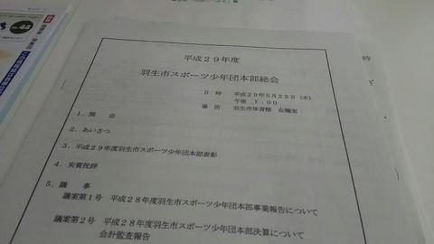 DSC_0588_20170525195413.jpg