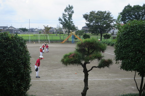 IMG_5274.JPG